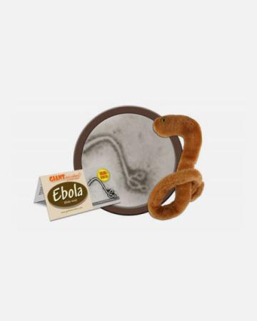 pre эбола