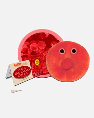 pre-eritrocit